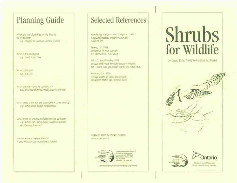 Shrubs for Wildlife Cover